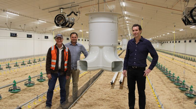 Technology first for Australia, in the latest Ryan-Ryte broiler shed complex build