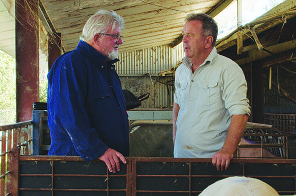 Long established Darling Downs producer solves productivity and efficiency issues